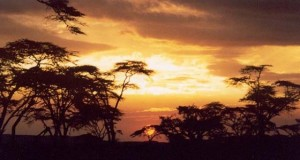 Tanzania-splendido-tramonto